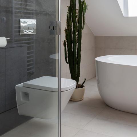 Shower cubicle and bathtub in luxury bathroom